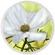 White Cosmos Floral Round Beach Towel