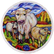 White Cow And Twin Calves Round Beach Towel