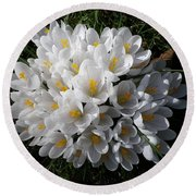 White Crocuses Round Beach Towel