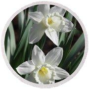 White Daffodils #2 Round Beach Towel