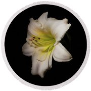 Round Beach Towel featuring the photograph White Daylily In The Garden by Ann Jacobson