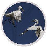 White Egret Ballet Round Beach Towel