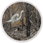Round Beach Towel featuring the photograph White Egret by David Bearden