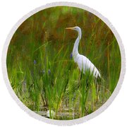 White Egret In Waiting Round Beach Towel