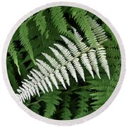 White Fern Round Beach Towel
