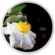 White Flower-so Silky And White Round Beach Towel