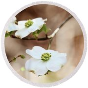 Round Beach Towel featuring the photograph White Flowering Dogwood Tree Blossom by Stephanie Frey