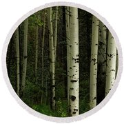 Round Beach Towel featuring the photograph White Forest by James BO Insogna