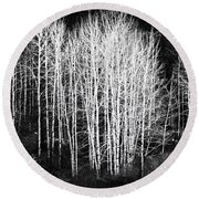 Round Beach Towel featuring the photograph White Forest Night  by Nadalyn Larsen
