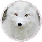 White Fox Round Beach Towel