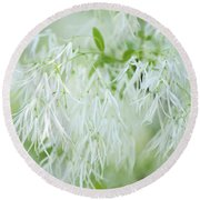White Fringetree Round Beach Towel