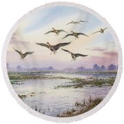 White-fronted Geese Alighting Round Beach Towel by Carl Donner