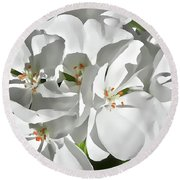 White Geraniums Round Beach Towel
