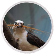 White-headed Buffalo Weaver Round Beach Towel
