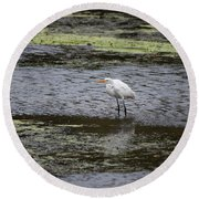 Round Beach Towel featuring the photograph White Heron On The Hudson by Jeff Severson