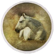 White Horse Art Round Beach Towel
