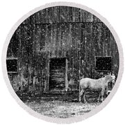 White Horse In A Snowstorm In Bw Round Beach Towel