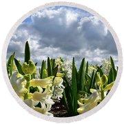 White Hyacinth Field Round Beach Towel by Mihaela Pater