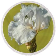 White Iris June 2016 Artistic.  Round Beach Towel