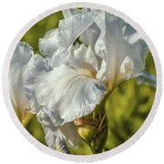 Round Beach Towel featuring the photograph White Iris June 2016.  by Leif Sohlman