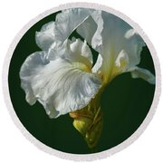 White Iris On Dark Green #g0 Round Beach Towel