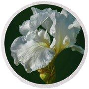 White Iris On Dark Green #g0 Round Beach Towel by Leif Sohlman