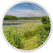 White Lily Pond  Round Beach Towel
