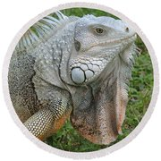 White Lizard Round Beach Towel