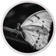 White Morpho Black And White Round Beach Towel
