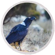 White-necked Raven Camping Out On Kilimanjaro Round Beach Towel by Jeff at JSJ Photography