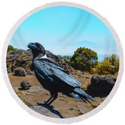 White-necked Raven Overlooking Mount Meru Round Beach Towel by Jeff at JSJ Photography