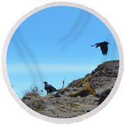 White-necked Raven Pair On Kilimanjaro Round Beach Towel by Jeff at JSJ Photography