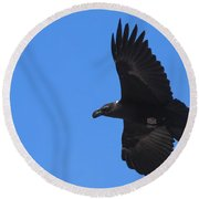 White-necked Raven Soaring Along Kilimanjaro Round Beach Towel by Jeff at JSJ Photography