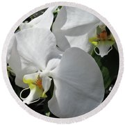 White Orchid Bloom Duo Round Beach Towel