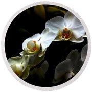 White Orchid With Dark Background Round Beach Towel