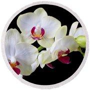 White Orchids Round Beach Towel