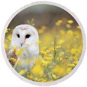 White Owl Round Beach Towel