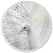 White Peacock Round Beach Towel by Peggy Collins