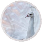 Round Beach Towel featuring the photograph White Peacock by Sebastian Musial