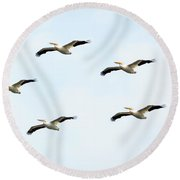 Round Beach Towel featuring the photograph White Pelican Flyby by Ricky L Jones