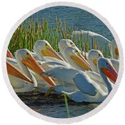 White Pelican Sun Party Round Beach Towel