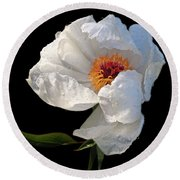 White Peony After The Rain Round Beach Towel by Gill Billington