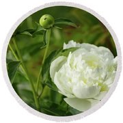 Round Beach Towel featuring the photograph White Peony by Cristina Stefan