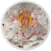 Round Beach Towel featuring the photograph White Peony by Sandy Keeton