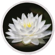White Petals Glow - Water Lily Round Beach Towel by MTBobbins Photography