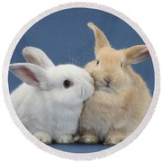 White Rabbit And Sandy Rabbit Round Beach Towel