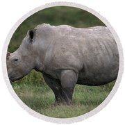 White Rhinoceros Ceratotherium Simum Round Beach Towel