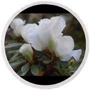 White Rhododendron 2 Round Beach Towel