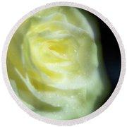 White Rose 4 Soft Round Beach Towel
