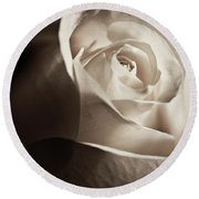 White Rose In Sepia 2 Round Beach Towel